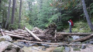 Final crossing across the log jam